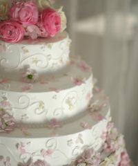 Pine Garden's Cake