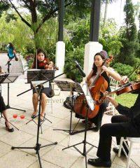 Vetta Quartet